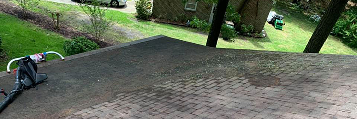 Soft Wash Roof Cleaning Service